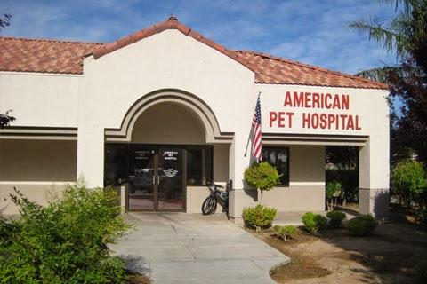 American Pet Hospital