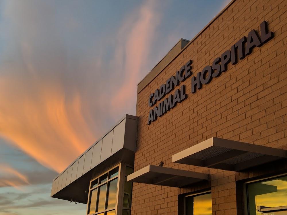 Cadence Animal Hospital